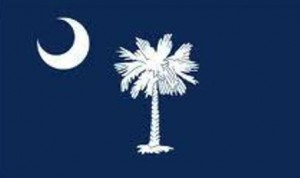 19 state flag