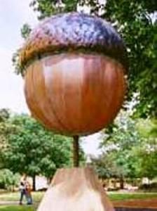 01 big acorn