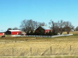 22 farm