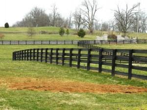 04  horse grave