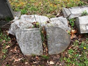 15 Jemima Stockton Irwin.1796.1895.AlbanyCemetery.Ky