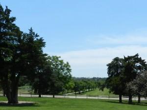 07 cedar property