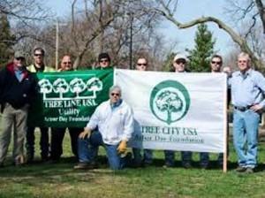 15 planting trees
