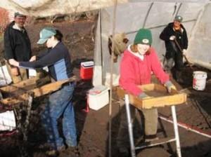 29 excavate