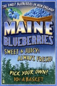 19 blueberries
