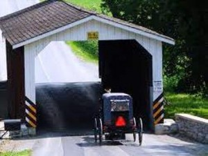 13 buggy covered bridge