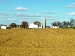 13 farmland