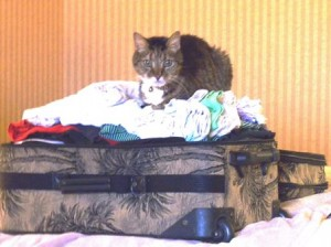 06 Alex on suitcase