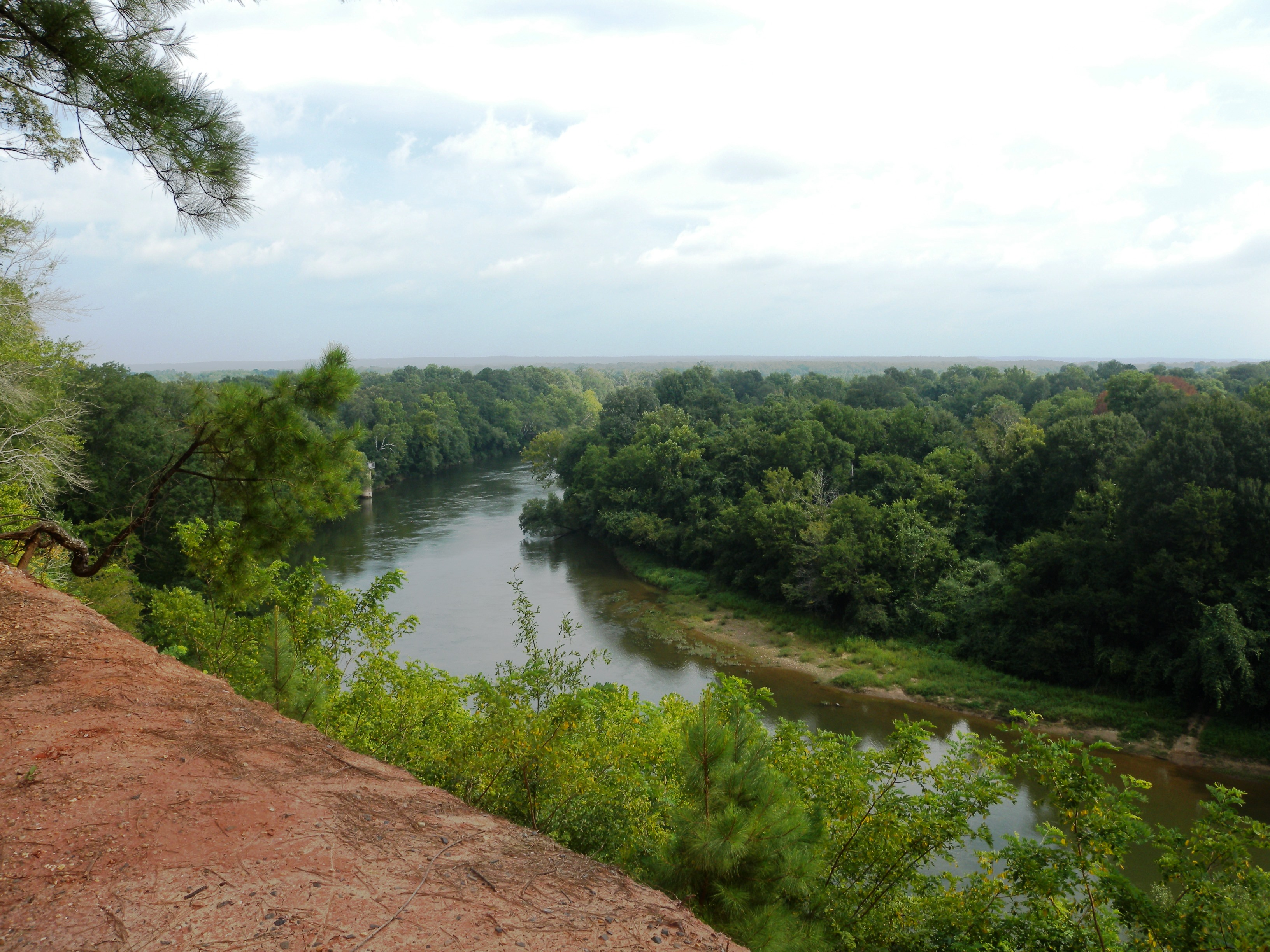 04 Ouachita River from Bluff