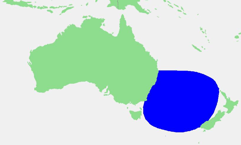 23.tasman sea color