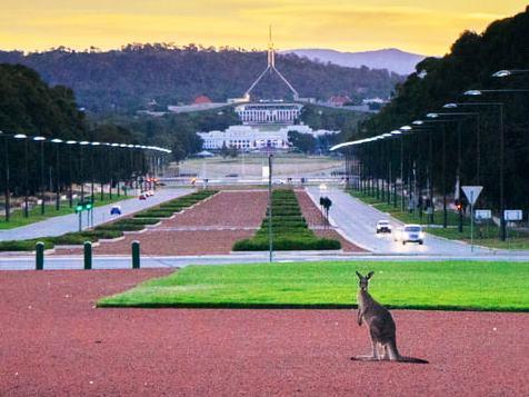 29.parliament w kangaroo