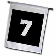02.flag 7